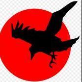 Raven434th